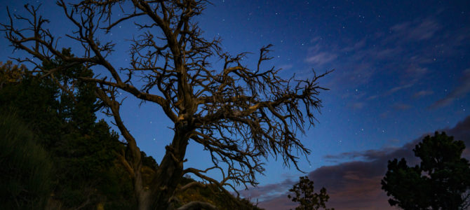 This Colorado National Park Was Just Named One of the Best Places for Stargazing in the U.S.