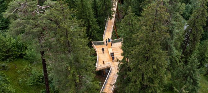 The World's Longest Treetop Walkway Lets You Stroll Almost a Full Mile in a Forest Canopy in Switzerland